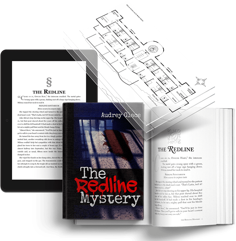 Book Writing, Cover, Illustrations, Website, and Publishing for The Redline Mystery